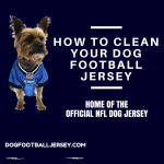 How To Clean Your Dog Football Jersey