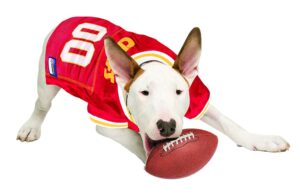 Kansas City Chiefs Dog Football Jersey