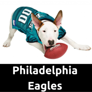 new product d6a12 15ce9 Philadelphia Eagles Dog Jersey | Dog Football Jersey