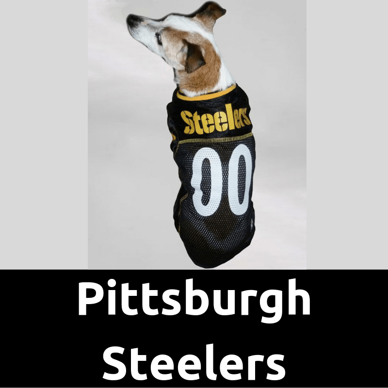 DogFootballJersey_PittsburghSteelersHome