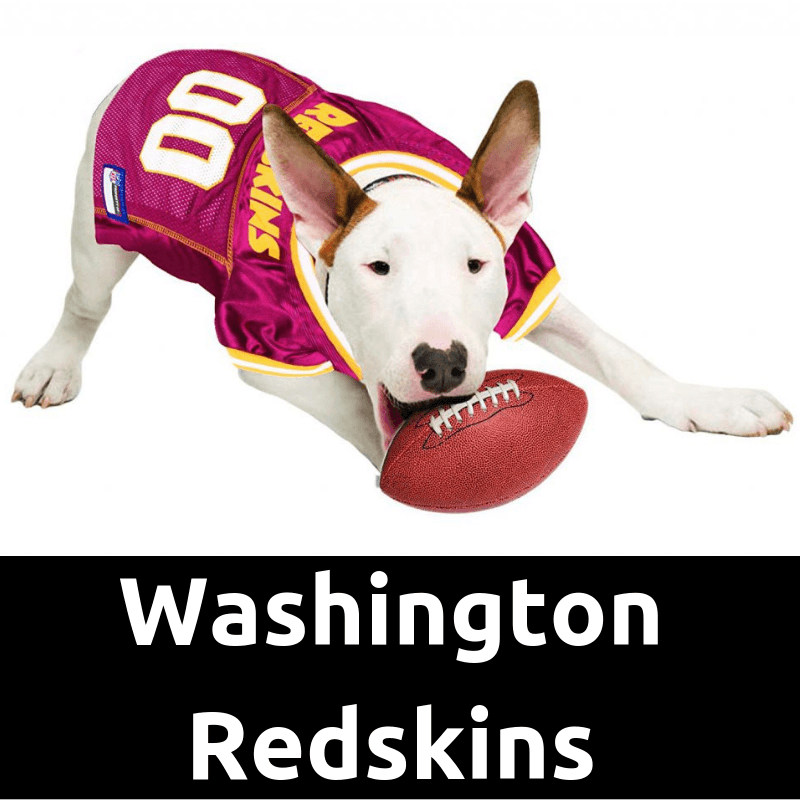 DogFootballJersey_WashingtonRedskinsHome