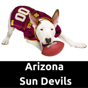 Arizona Sun Devils Dog Jersey