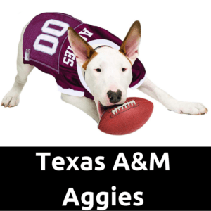 DogFootballJersey_TexasA&MAggies